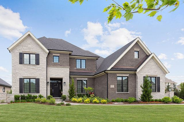11225 York Drive, Frankfort, IL 60423 - #: 10629678