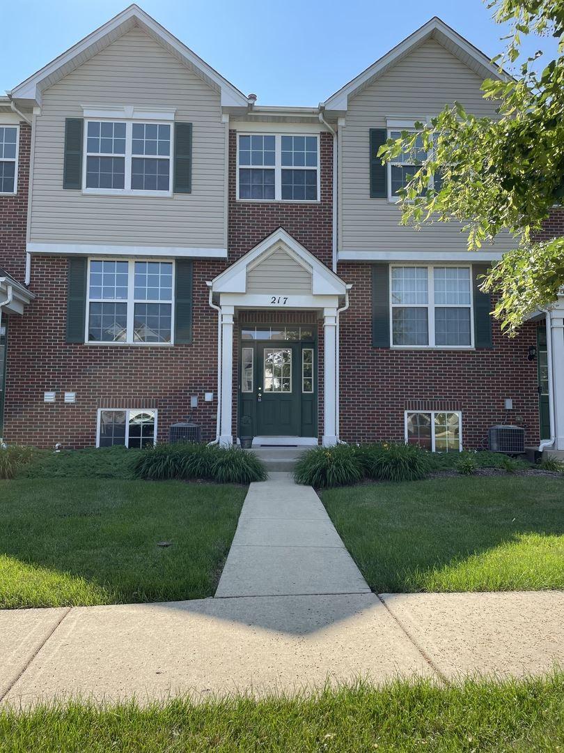 Photo of 217 S Oak Creek Lane, Romeoville, IL 60446 (MLS # 11146699)