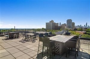 Tiny photo for 350 West Belden Avenue #406, Chicago, IL 60614 (MLS # 10536713)