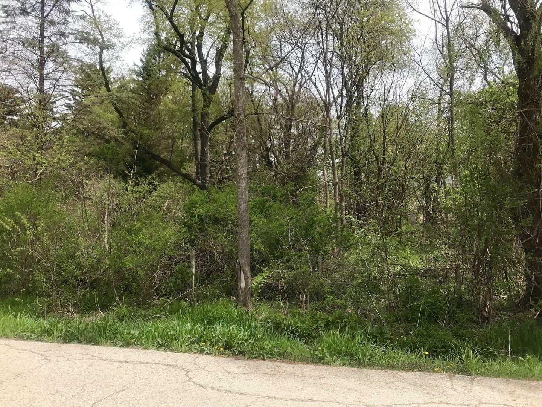 Lot A Illinois Street, Crystal Lake, IL 60014 - #: 11001722