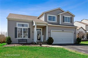 Photo of 25741 South Yellow Pine Drive, CHANNAHON, IL 60410 (MLS # 10347752)
