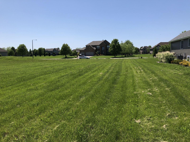 Photo of 18905 S Chestnut Drive, Shorewood, IL 60404 (MLS # 10728764)