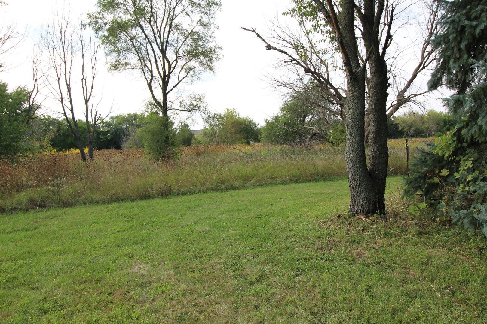 Photo of 9560 S Carls Drive, Plainfield, IL 60585 (MLS # 10857801)