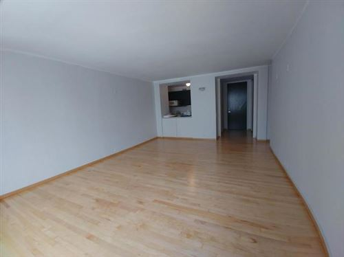 Tiny photo for Chicago, IL 60611 (MLS # 10970828)