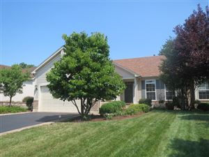 Photo of 25852 West Timber Ridge Drive, CHANNAHON, IL 60410 (MLS # 10465838)