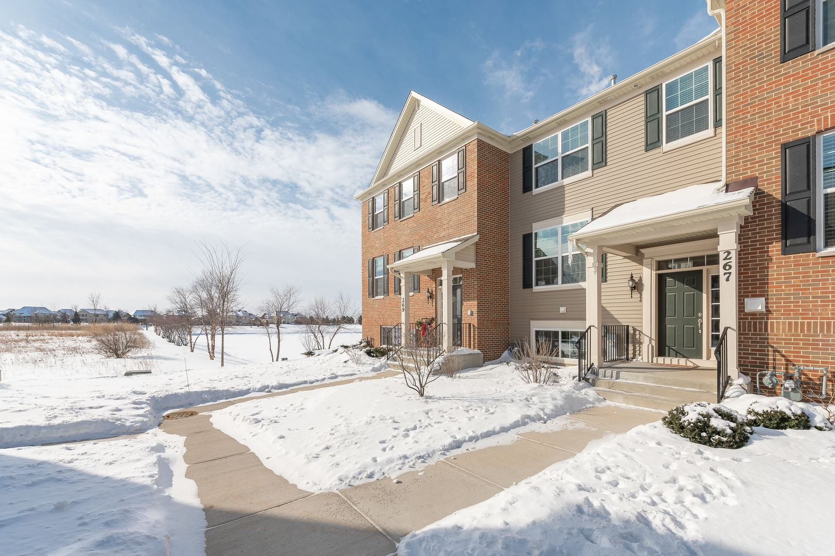 Photo of 267 Lakeshore Drive, Oswego, IL 60543 (MLS # 10998859)