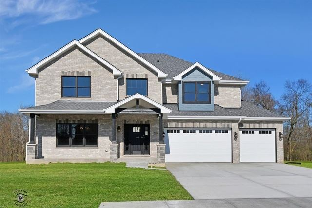 22659 Lilly Pad Lane, Frankfort, IL 60423 - #: 10642865