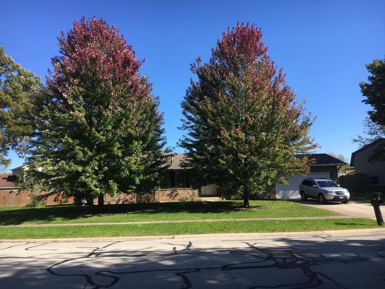Photo of Bolingbrook, IL 60440 (MLS # 10916922)