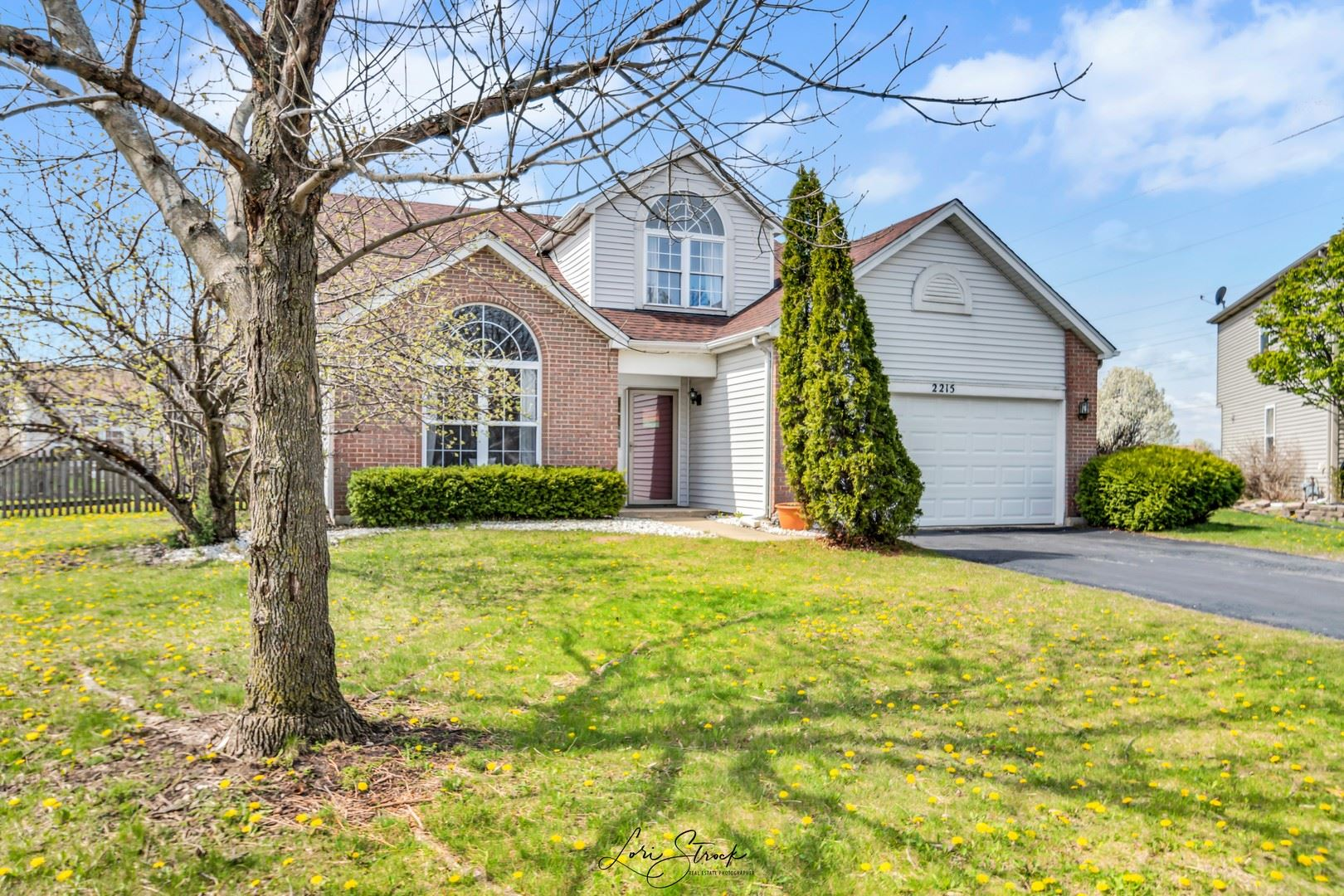 Photo of 2215 Twin Lakes Court, Plainfield, IL 60586 (MLS # 11061938)