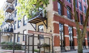 Photo of 2511 West Moffat Street #210-I, Chicago, IL 60647 (MLS # 10543945)