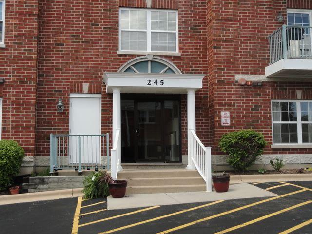245 W Johnson Street #206, Palatine, IL 60067 - #: 10601986