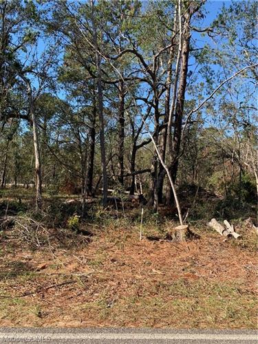 Photo of 11935 HIGHWAY 98, FOLEY, AL 36535 (MLS # 647097)