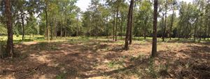 Photo of 0 TIMBER SPRINGS COURT #7, WILMER, AL 36587 (MLS # 620335)