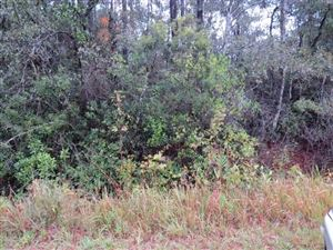 Photo of 0 RUSSELL ROAD, CITRONELLE, AL 36522 (MLS # 620750)