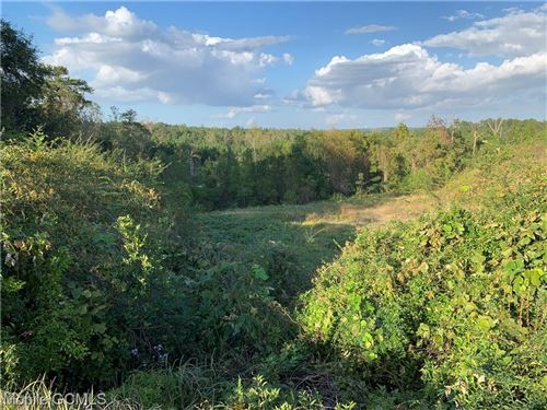 Photo of 0 HIGHWAY 45, EIGHT MILE, AL 36613 (MLS # 645918)