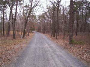 Photo of 24 Jones Road, Barnegat, NJ 08005 (MLS # 21923192)