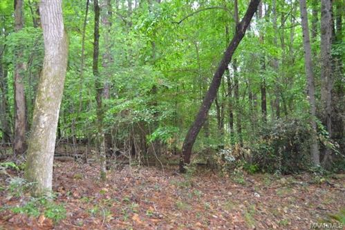Photo of 115 HICKORY WAY, Dadeville, AL 36853 (MLS # 447320)