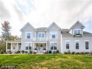 Photo of 2607A CHESTNUT WOODS CT, REISTERSTOWN, MD 21136 (MLS # BC10244031)