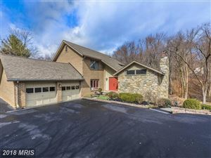 Photo of 13203 LARSON CT, MOUNT AIRY, MD 21771 (MLS # FR10169034)