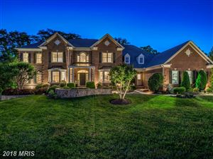 Photo of 43522 PUMPKIN RIDGE CT, ASHBURN, VA 20147 (MLS # LO10251044)