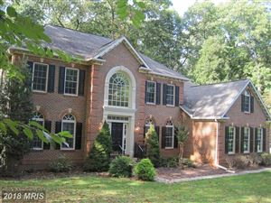 Photo of 14 FALLING WATER CT, REISTERSTOWN, MD 21136 (MLS # BC10082048)