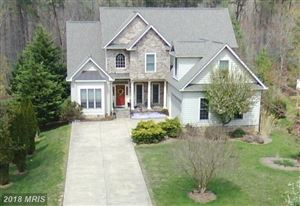 Photo of 10905 CHATHAM RIDGE WAY, SPOTSYLVANIA, VA 22551 (MLS # SP10196082)