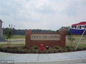 Photo of 1101 TRICE MEADOWS CIR, DENTON, MD 21629 (MLS # CM7413089)