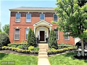 Photo of 40538 SPOTTED OWL DR, LEESBURG, VA 20175 (MLS # LO10244092)