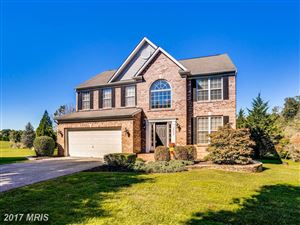 Photo of 14000 MONTICELLO DR, COOKSVILLE, MD 21723 (MLS # HW10112114)