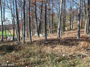 Tiny photo for GREENSTONE WAY, MC HENRY, MD 21541 (MLS # GA9806127)
