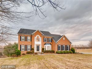 Photo of 2518 CHESTNUT WOODS CT, REISTERSTOWN, MD 21136 (MLS # BC10242141)