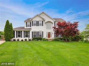 Photo of 524 RUGBY CT, PURCELLVILLE, VA 20132 (MLS # LO10243148)