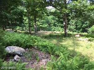 Photo of 181 CASTLE MOUNTAIN CAMPS, FRANKLIN, WV 26807 (MLS # PT10137172)