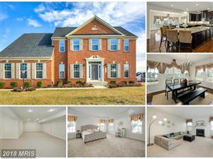 Photo of 26768 CRUSHER DR, CHANTILLY, VA 20152 (MLS # LO10129175)