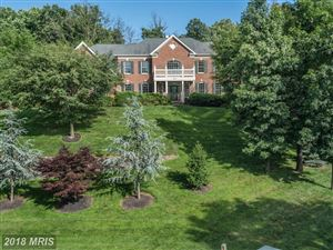 Photo of 41296 DUTTON CT, WATERFORD, VA 20197 (MLS # LO10273182)