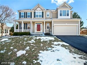 Photo of 307 PATHWAY PL SW, LEESBURG, VA 20175 (MLS # LO10191183)