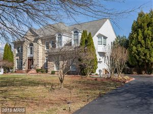 Photo of 1093 SAFA ST, HERNDON, VA 20170 (MLS # FX10158190)