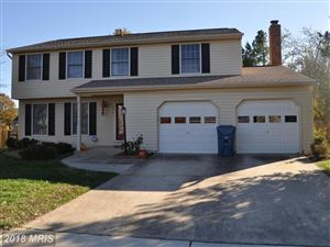 Photo of 13007 NEW AUSTIN CT, HERNDON, VA 20171 (MLS # FX10273196)