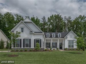 Photo of 11414 OSPREY TRL, SPOTSYLVANIA, VA 22551 (MLS # SP10249198)