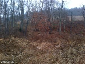 Tiny photo for OLD CRELLIN RD NW, OAKLAND, MD 21550 (MLS # GA8373205)