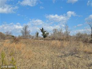 Photo of 42100 JOHN MOSBY HWY, ALDIE, VA 20105 (MLS # LO8296217)