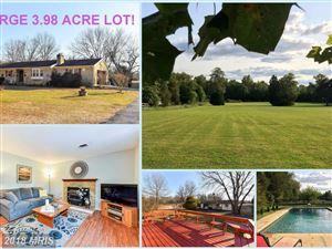 Photo of 19322 YOUNGS CLIFF RD, STERLING, VA 20165 (MLS # LO10147230)