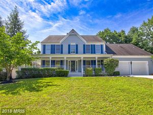 Photo of 15254 SURREY HOUSE WAY, CENTREVILLE, VA 20120 (MLS # FX10304238)