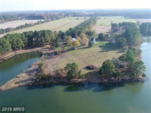 Photo of 5130 LONG POINT FARM DR, OXFORD, MD 21654 (MLS # TA10142246)