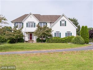 Photo of 19149 PINTAIL CT, PURCELLVILLE, VA 20132 (MLS # LO10162251)