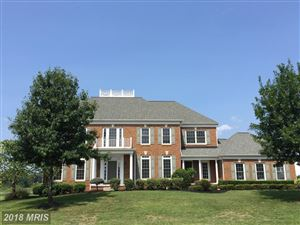 Photo of 25667 CABIN POINT CT, CHANTILLY, VA 20152 (MLS # LO10309259)