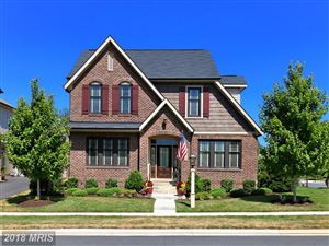 Photo of 42413 MYAN GOLD DR, ASHBURN, VA 20148 (MLS # LO10304316)