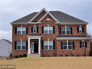 Photo of 24409 ROCK POND CT, ALDIE, VA 20105 (MLS # LO10132317)
