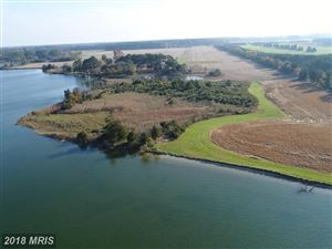 Photo of LONG POINT FARM, OXFORD, MD 21654 (MLS # TA10142323)