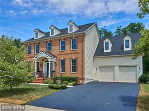 Photo of 40585 BANSHEE DR, LEESBURG, VA 20175 (MLS # LO10302325)